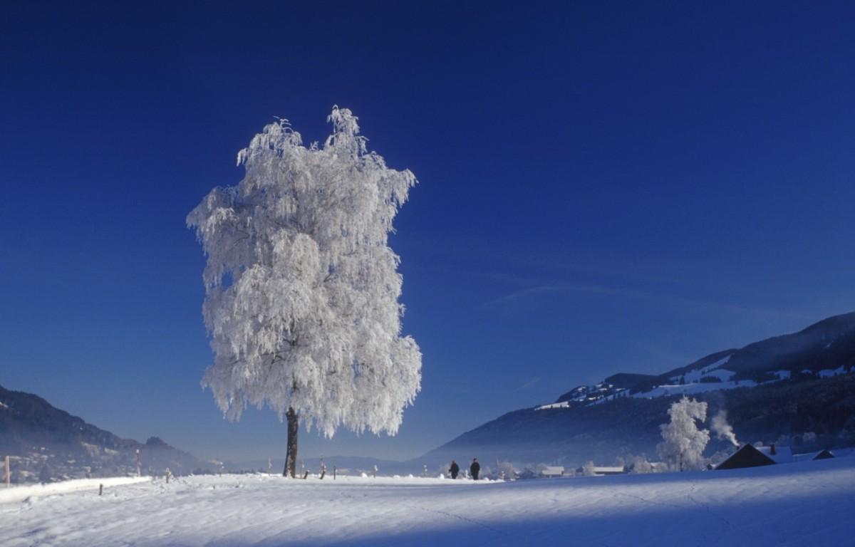Ganz in unschuldigem Weiß glitzert das winterliche Allgäu zauberhaft.
