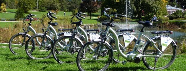 Die Bikes kannst Du in verschiedenen Sportgeschäften ausleihen.