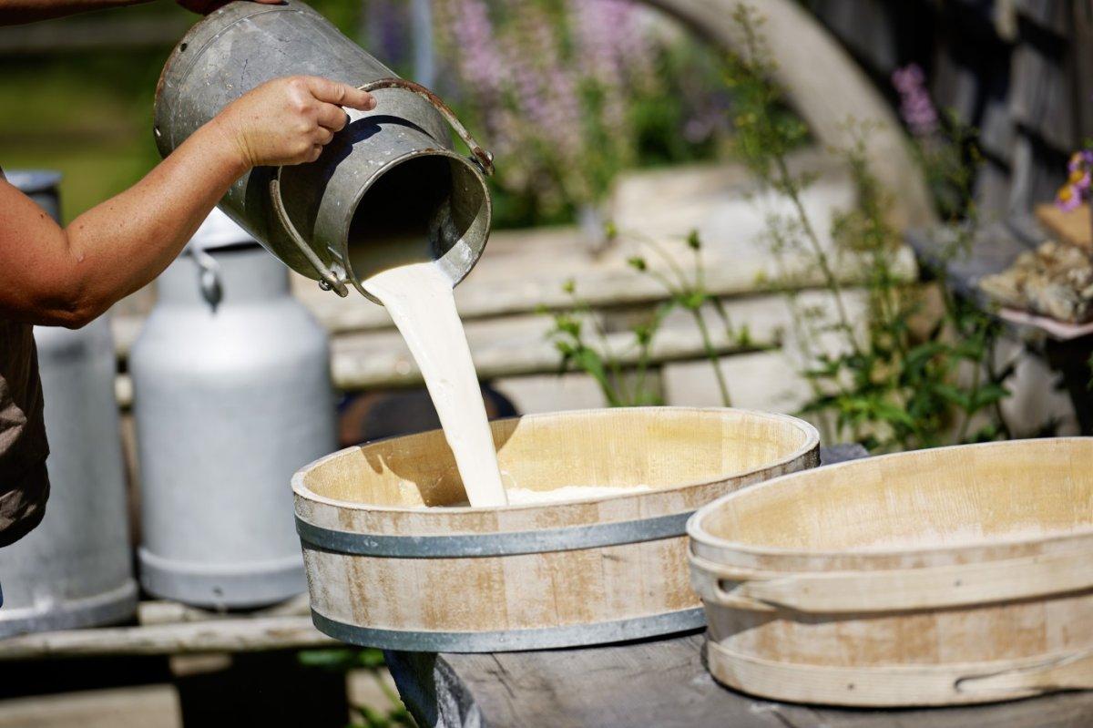 Traditionelle Käseherstellung auf einer Alpe