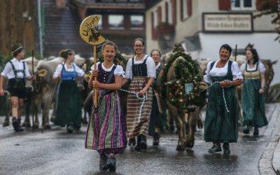 Die Waltners Alpe auf dem Weg ins Tal