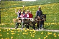 Ein Urlaub auf dem Bauernhof lässt Kinderträume wahr werden.