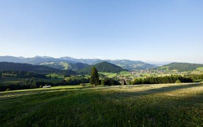 Oberstaufen-Panorama von Kalzhofen