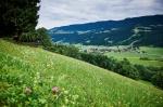 Aussicht auf Thalkirchdorf von Salmas