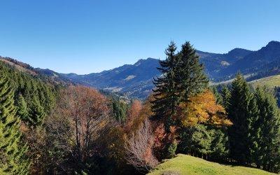 Blick in die Berge - Imberg