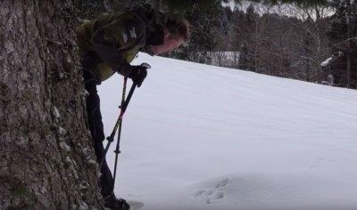 Ranger Max auf Spurensuche
