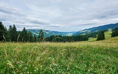 Oberstaufen Hündle
