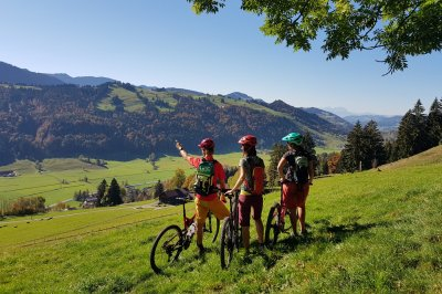Mountainbiken in Oberstaufen