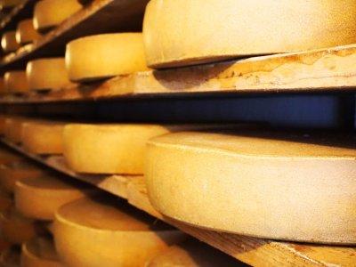 Käsekeller - hier lagert der Käse mehrere Monate