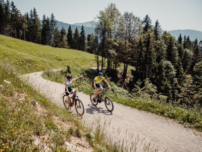 Radwege rund um Oberstaufen erkunden