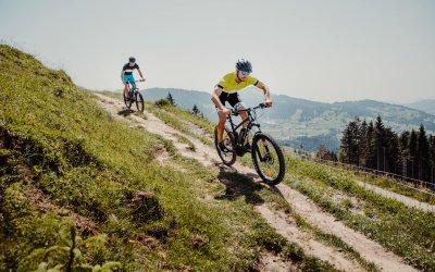 Mountainbike rund um Oberstaufen