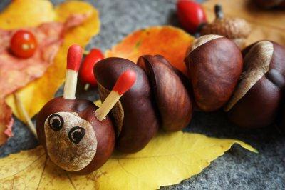 Herbstdeko Oberstaufen: Raupe aus Kastanien