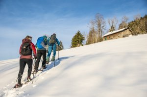 gemütliche Einsteiger-Schneeschuhtour