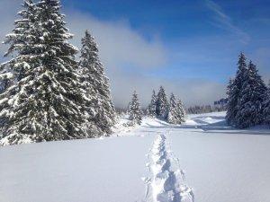 Winterlandschaft Oberstaufen beim Schneeschuhwandern