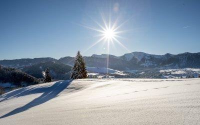 Landschaft Hochgrat