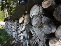 Holzsteer