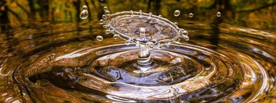 Wassertropfen allergikergeeignet