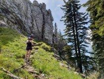 Weg zum Besler Gipfel