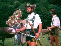 Der traditionelle Viehscheid im September