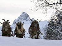 Traditionelles Klausentreiben am 6. Dezember