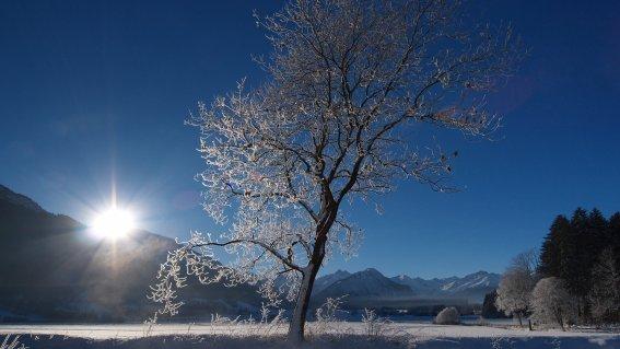 Rubi-winter-tourismus-oberstdorf