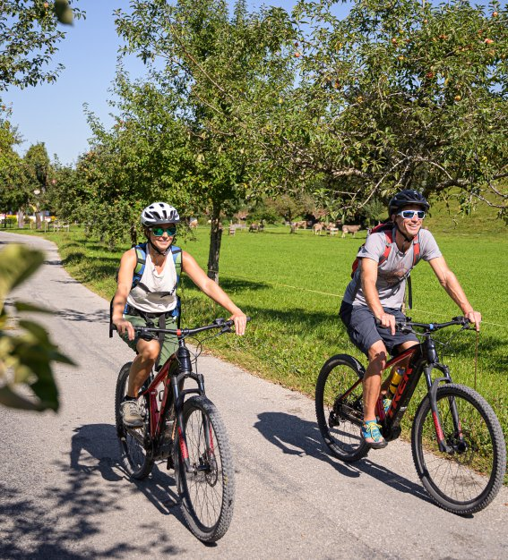Unterwegs mit dem E-Bike