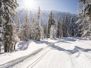 Winterwunderland im Rohrmoos