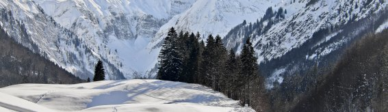 Bergpanorama mit Langläuferin