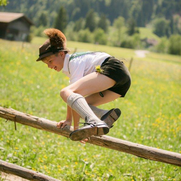 Sprung über den Zaun