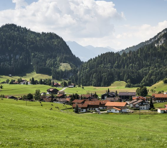 Ried bei Obermaiselstein