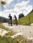 Fahrradfahrer im Lochbachtal