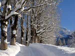 Hofmannsruh im Winter