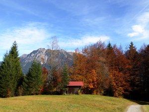 Herbst am Söllereck