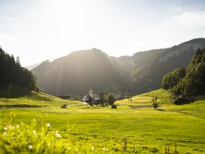 Tiefenbach im Sommer