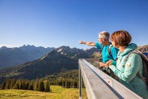 Blick auf die Trettachspitze vom Fellhorn aus