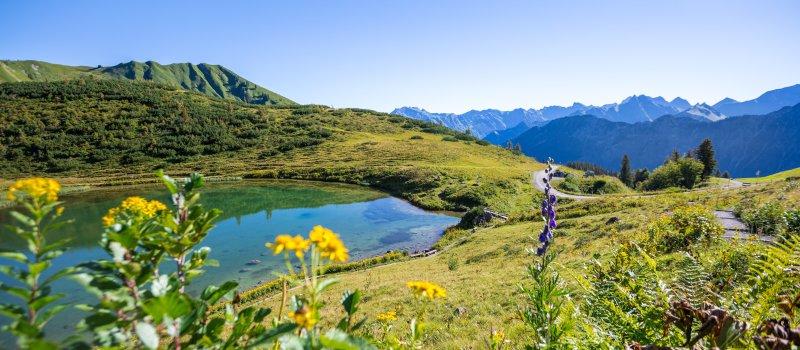 Im Sommerurlaub zum Schlappoldsee am Fellhorn