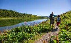 Wenn sich die Natur im Bergsee spiegelt