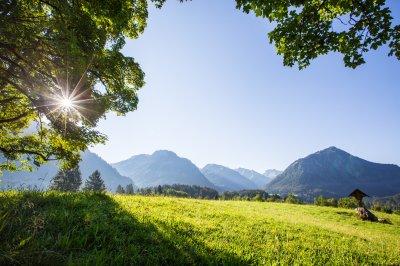 Die Allgäuer Alpen immer im Blick