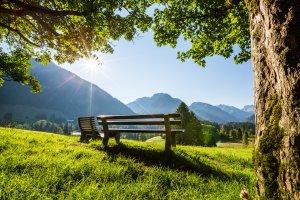 Aussicht auf die Allgäuer Alpen genießen