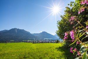 Oberstdorf umgeben von Wiesen und Bergen