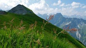 Wanderung zum Laufbacher Eck