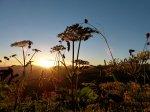 Sonnenaufgang am Walmendingerhorn