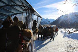 Pferdeschlittenfahrt im Hotel Mohren