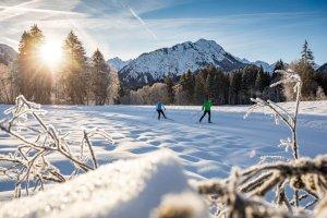 Langlaufen mit wunderschönem Alpenpanorama