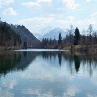 Auwaldsee (2)