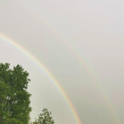 Regenbogen (3)