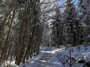 Winterwanderung Bergkristall (1)