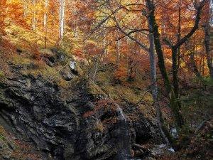 Traufbachtal (2)