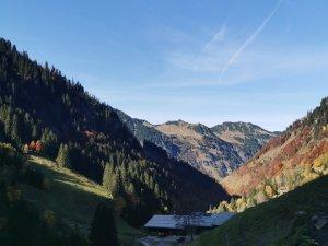 Traufbachtal (10)