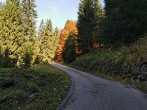 Traufbachtal (25)
