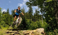 Rasante Mountainbiketour